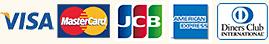 visa MasterCard,JCB
