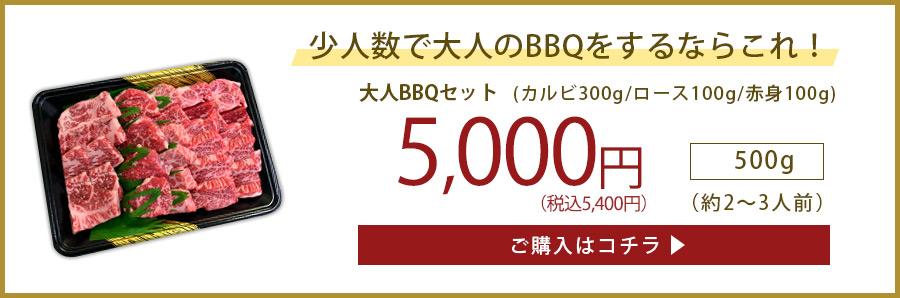 少人数5000円